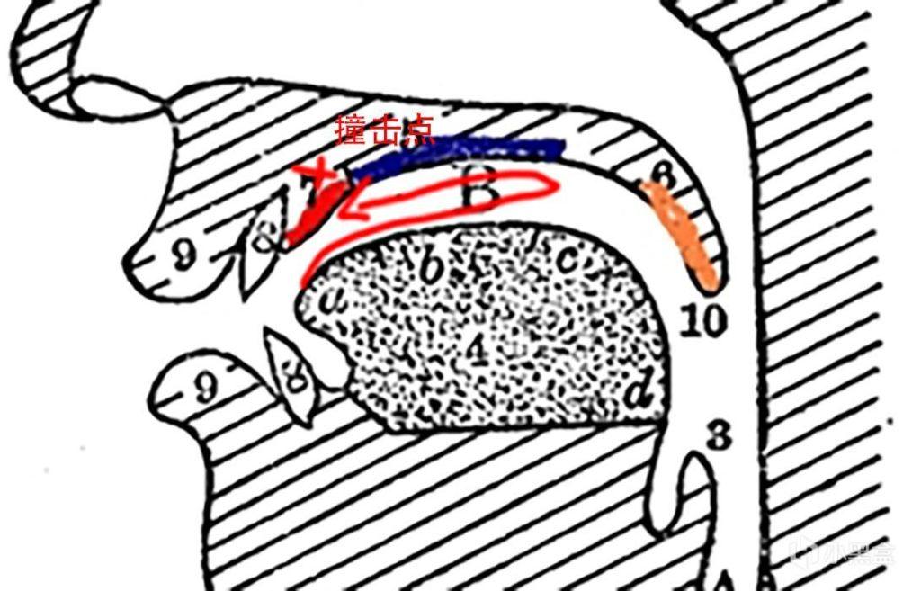 炫酷的弹舌音是怎么发出来的-Blackwings官网-男士形象改造-穿搭设计顾问-男生发型-素人爆改